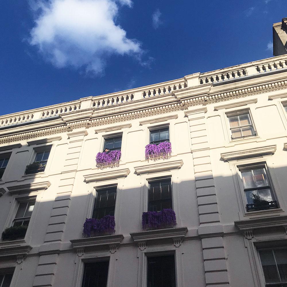 dental web design in london